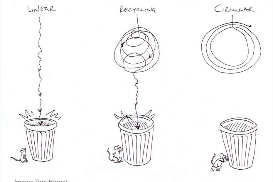 circular economy more than recycling